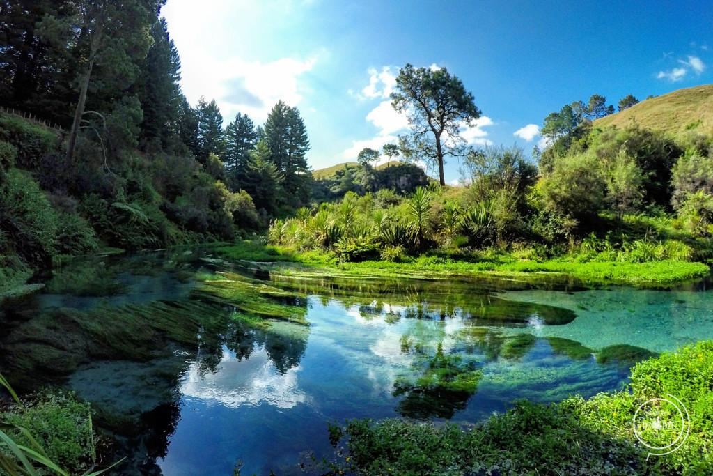 Nowa Zelandia - Na Nowej Drodze Życia (6)