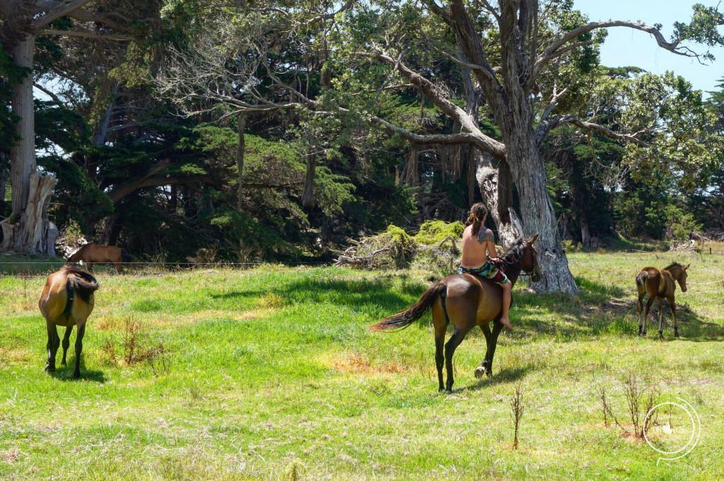 Nowozelandzi raj - Na Nowej Drodze Życia