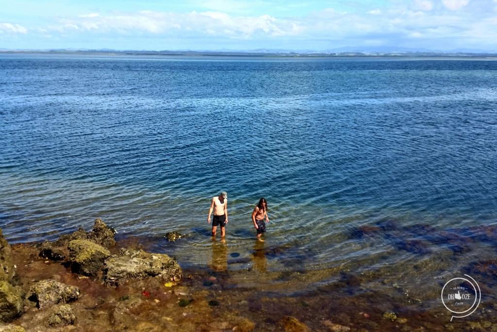 Nowozelandzki mały raj - Na Nowej Drodze Życia (16)