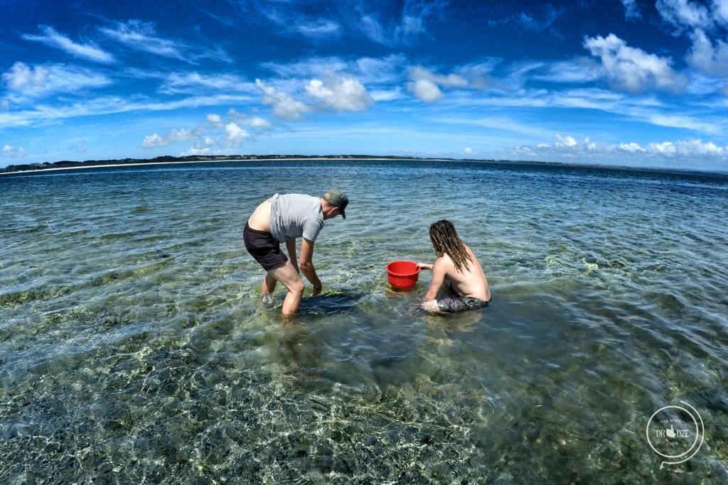 Nowozelandzki raj - Na Nowej Drodze Życia (3)