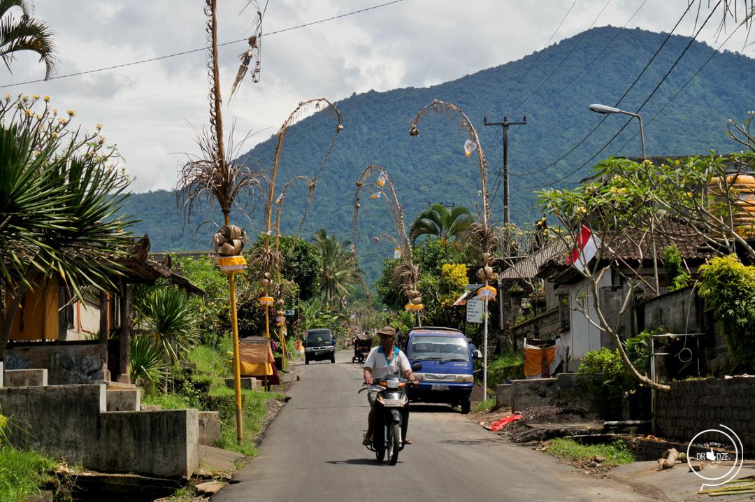 Bali – co warto zobaczyć. Tarasy ryżowe Jatiluwih
