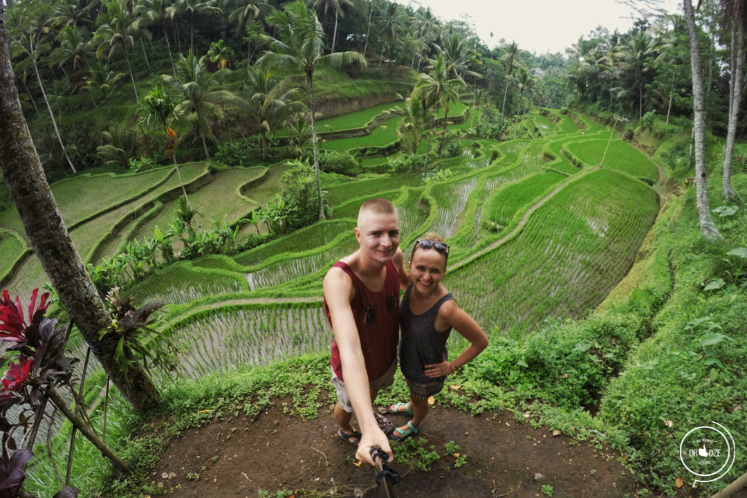 Bali – co warto zobaczyć. Tarasy ryżowe Tegalalang