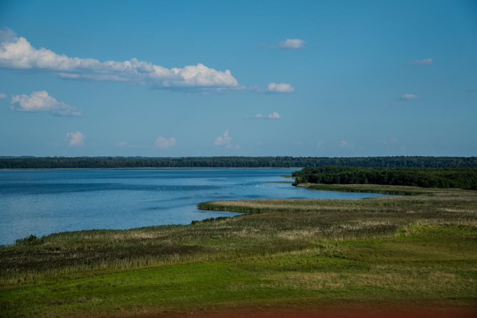Litwa co zobaczyć - Wieża METALIAI - Na Nowej Drodze Życia