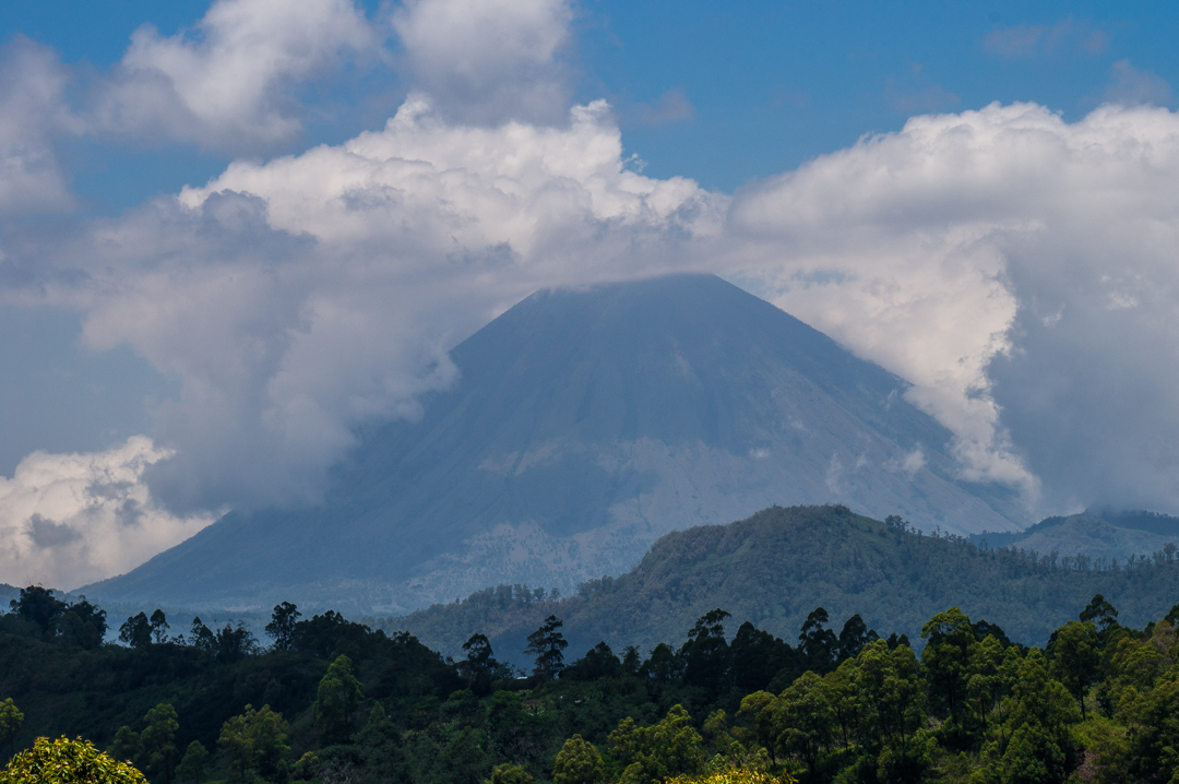 Flores co zobaczyć - Indonezja Bajawa