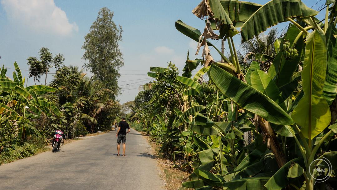 Owoce w Wietnamie