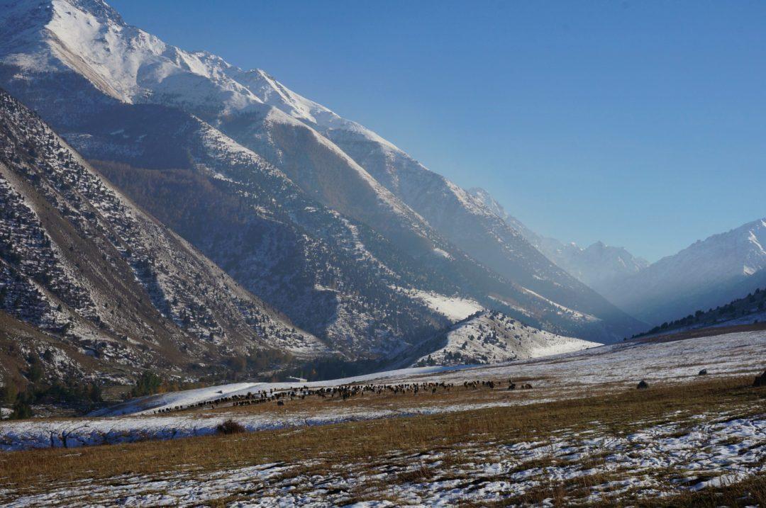 Park Ala Arche. Autotop w Kirgistanie - Na Nowej Drodze Życia