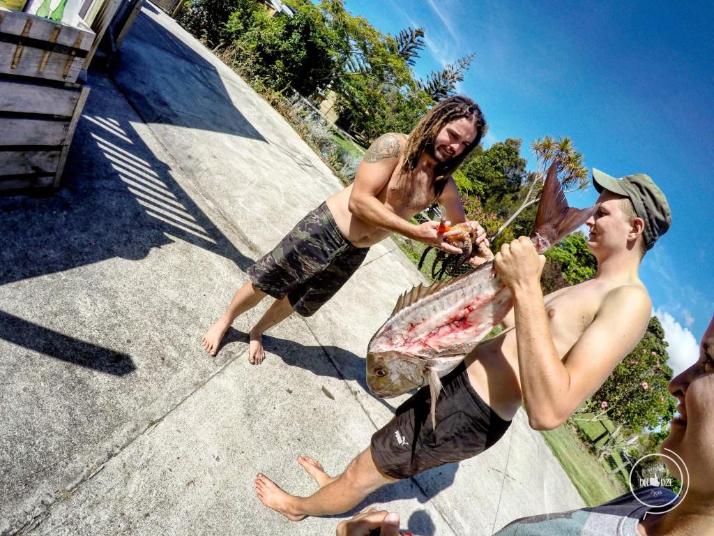 Nowozelandzi raj - Na Nowej Drodze Życia (3)