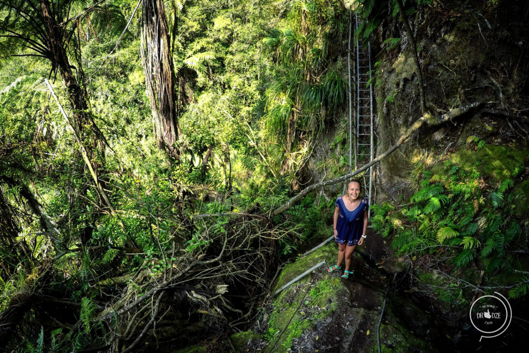 Omanawa waterfall - Na Nowej Drodze Życia