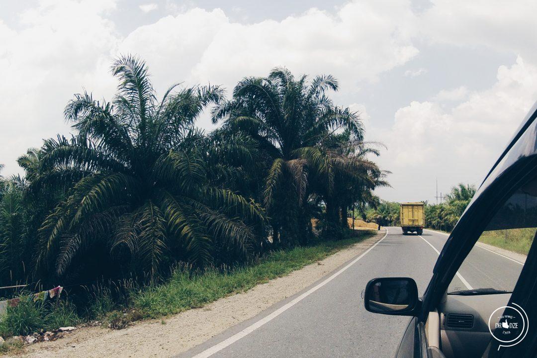 Autostop w Indonezji - Na Nowej Drodze Życia