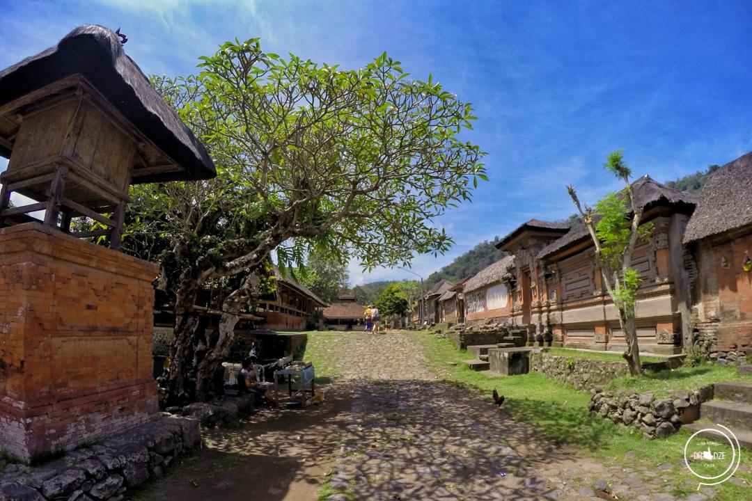 Bali – co warto zobaczyć. Wioska Tenganan