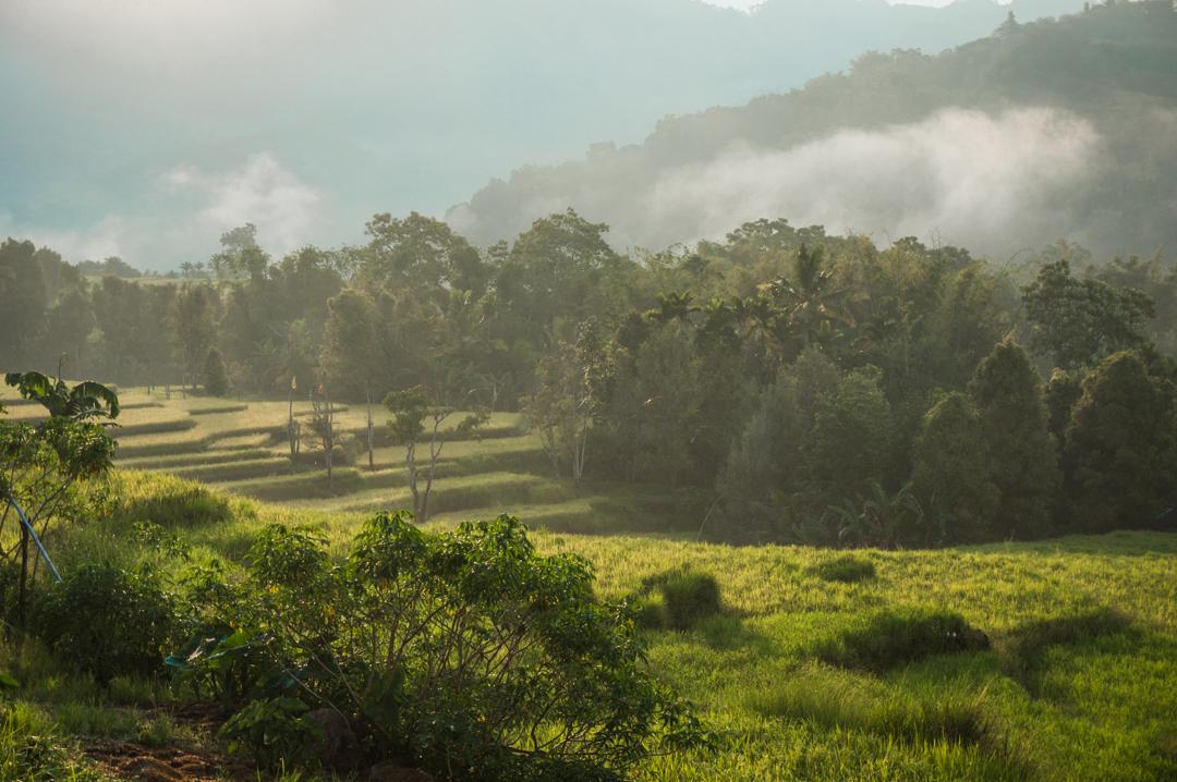 Flores co zobaczyć - Indonezja - Na Nowej Drodze Życia