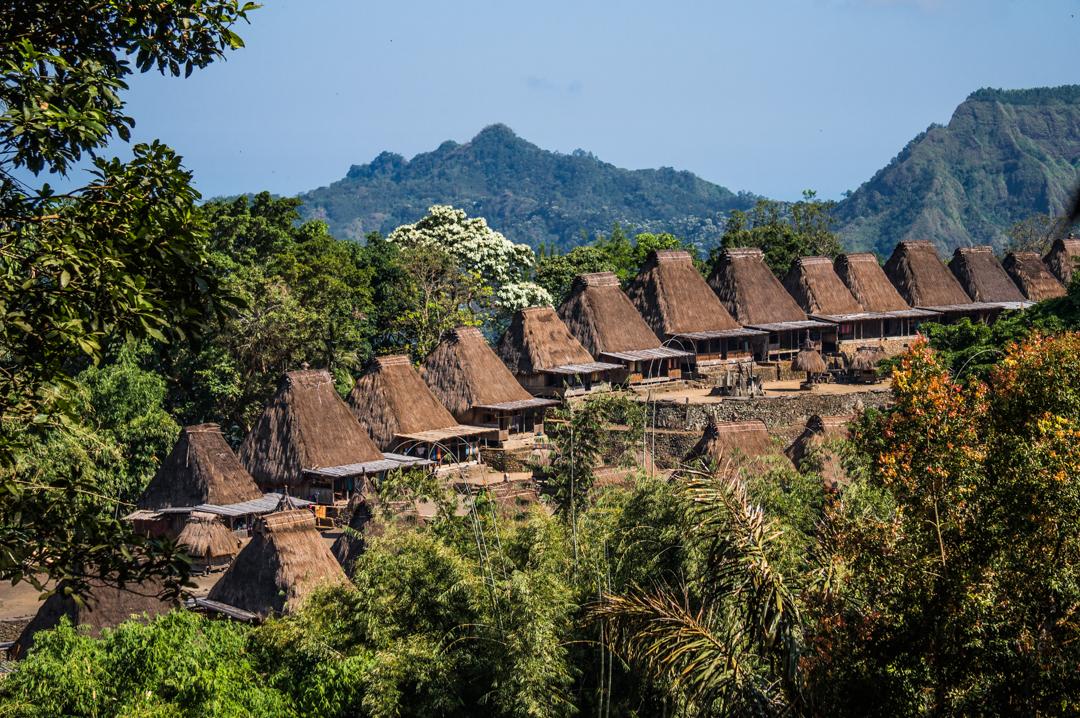 Flores co zobaczyć - Indonezja - Wioska Bena