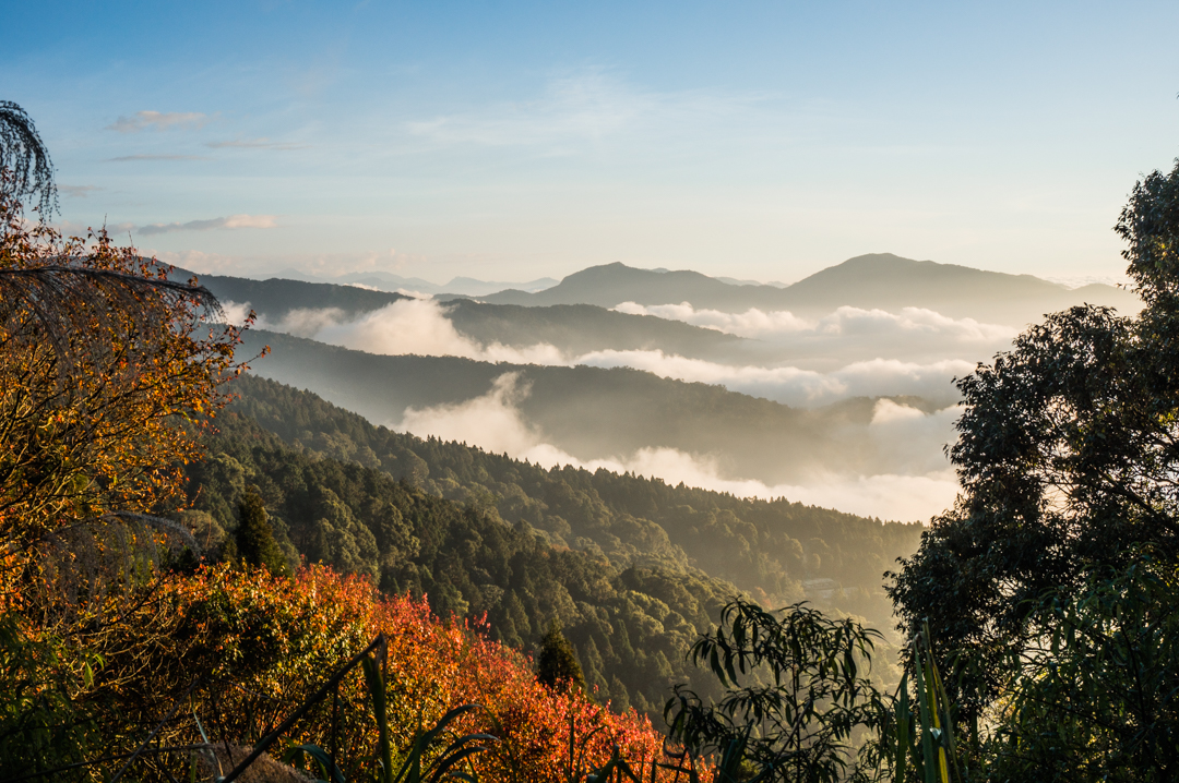 Tajwan - co zobaczyć? Park Narodowy Alishan