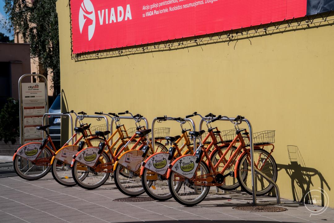 Rowery miejskie w Kownie